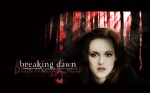 Poster from Breaking Dawn